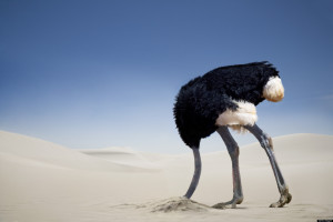 ostritch head in the sand